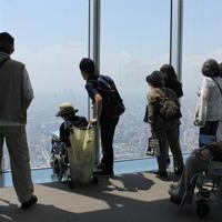 写真:車椅子からもいい景色!