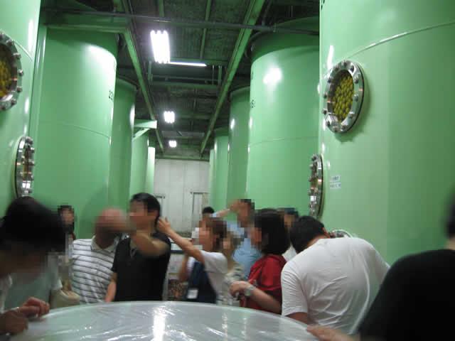 写真1:梅酒工場のタンクがたくさん並んでいます。タンクの中には梅がぎっしり詰まってる写真です。
