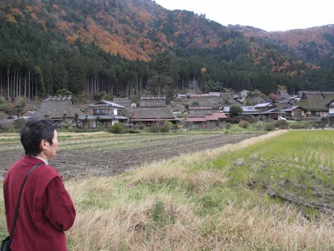 写真:知井地区のかやぶきの里