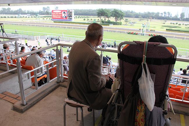 写真:新潟競馬場の車椅子専用席にて