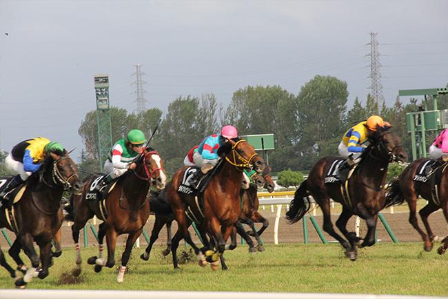 写真:迫力のレース
