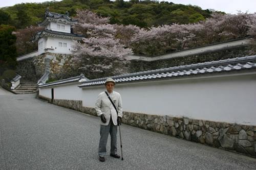 写真:たつの城の前で桜を前に記念撮影