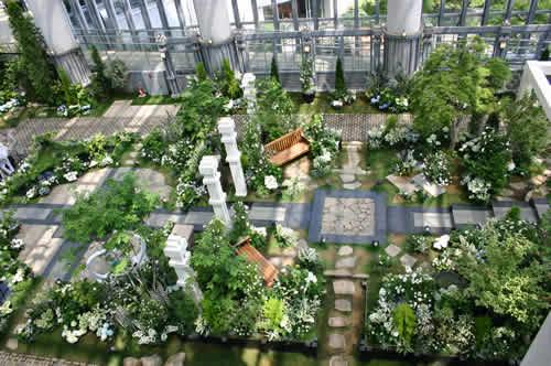 写真:奇跡の星の植物館を見下ろす