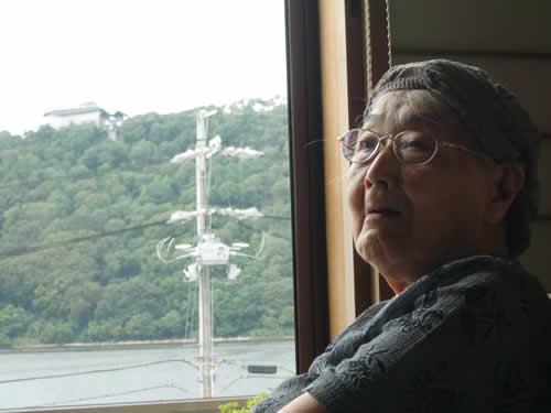 写真:車窓から景色を眺める